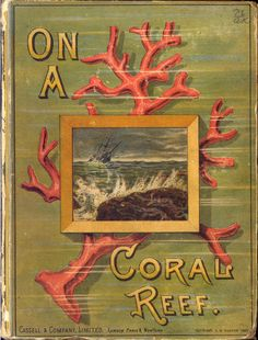 On a Coral Reef. The Story of a Runaway Trip to Sea. Arthur Locker (1828-1893). Cassell  Company, Limited, New York, London, Paris, 1883. University of Florida. In the preface by Arthur Locker, he suggests the story is intended for boys and girls and that the main incidents in the narrative are based on a true story, of a wreck of a ship, the Cabalva.