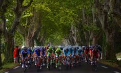 #TourDeFrance Stage-2 Picks   Tons of Money To be made With #TDF16 @Cyclingbetting - http://www.sportsbookreview.com/sports-betting/free-picks/tour-de-france-stage-2-183km-saint-lo-cherbourg-en-cotentin-a-73411/#utm_sguid=165879,8f2596f5-47ad-e05b-6631-91f04b20f620
