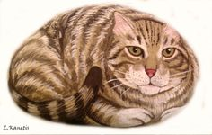 cat - painted rock