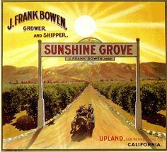 Upland Sunshine Grove Orange Citrus Crate Label Art Print