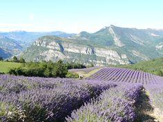 Alpes de Haute-Provence,