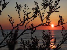 sunrise photo by Gary Jackson : 5.1.15