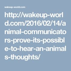 http://wakeup-world.com/2016/02/14/animal-communicators-prove-its-possible-to-hear-an-animals-thoughts/