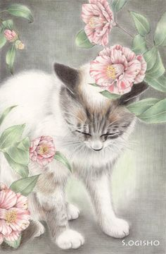 Adorable kitty art with flowers. I Love Cats, Crazy Cats, Cat Flowers, Sketch Painting, Mundo Animal, Cat Drawing, Pretty Cats, Whimsical Art, Dog Art