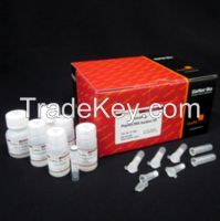 Primeprep Plasmid Dna Isolation Kit.