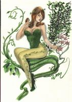 Poison Ivy A3 conven