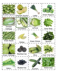Easy Ways to Improve and Expand Your English Vocabulary: 20 Vocabulary Topics 32 Nutrition Guide, Nutrition Education, Nutrition Activities, Food Nutrition, Chayote Squash, Chinese Cabbage, Green Cabbage, Sugar Snap Peas, Food Themes