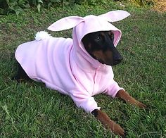 I have never been so humiliated! Seriously, who thought this was cute??