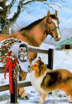 Pretty collie and horse grace a vintage Christmas card. Christmas Horses, Cowboy Christmas, Christmas Animals, Christmas Cats, Country Christmas, Christmas Greetings, Winter Christmas, Merry Christmas, Christmas Time