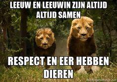 leeuw en leeuwin zijn altijd altijd samen respect en eer hebben dieren - lions | Meme Generator