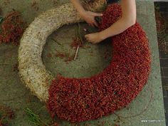 Krans van rozenbottels..binden met wikkeldraad Wreath Crafts, Diy Wreath, Door Wreaths, Seashell Wreath, Floral Wreath, Autumn Wreaths, Christmas Wreaths, Funeral Flower Arrangements, Deco Floral