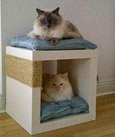 IKEA Hack for cats. VALJE Wall cabinet, white $25.00.The price reflects selected optionsArticle Number: 902.796.15