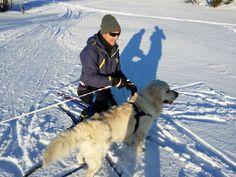 Skitur rundt Rundetjønn