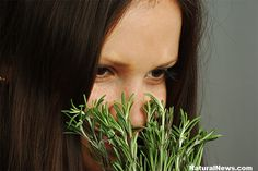 Science Proves Rosemary Can Help Fight Dementia and Alzheimer's