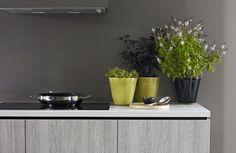 Cabinetry featuring Melteca Bleached Wenge. Kitchen Interior, Kitchen Design, Kitchen Ideas, Decorative Panels, Planter Pots, Outdoor Decor, Kitchens, Clever, Home Decor