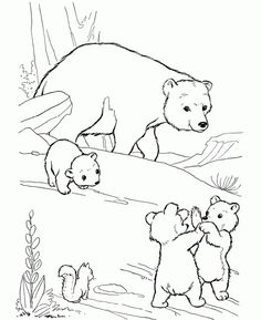 Online Polar Bear Coloring Page Printable For Kids