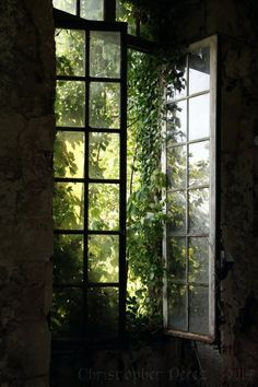 Abandoned Places ~ Fenetre Ouverte The warmth of the late afternoon sun streaming through open windows inviting the breeze to dance and swirl inside. Dark Green Aesthetic, Nature Aesthetic, Aesthetic Design, Window View, Open Window, Nature Sauvage, Slytherin Aesthetic, Through The Window, Abandoned Places