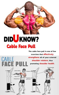 🔥 Did you know Cable Face Pull 🚨 Exercise details Target muscle: Posterior Deltoid Synergists: Infraspinatus, Teres Minor, Lateral Deltoid, Middle and Lower Traps Workout, Gym Workout Tips, Weight Training Workouts, Workout Fitness, Ripped Workout, Face Pull Exercise, Diet Exercise, Shoulder And Trap Workout, Shoulder Traps