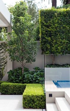 Sharp rectangular angles form a visually stunning modern garden.