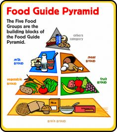 Food Pyramid Health Adolescent Health Children Health Daily Routine Night Routine Diet and Nutrition Diet Healthy Drinks Nutrition Vitamins Eye Care L What Is Healthy Food, Healthy Snacks For Kids, Healthy Drinks, Healthy Lunches, Healthy Eating, Five Food Groups, Group Meals, Food Groups Chart, Food Groups For Kids