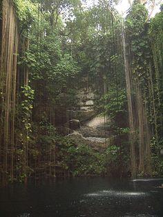 Cenote in Mexico!