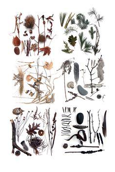 complete winter palette (mary jo hoffman)