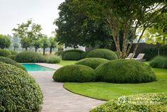 Aangelegde tuinen door tuinonderneming Monbaliu - Romantische living tuin met strak Biopool overloopzwembad