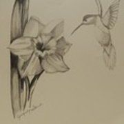 Hummingbird Two Print by Jennifer Lynn Butler