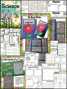 Plants - Activities, printables, crafts, labs, and SO MUCH MORE!