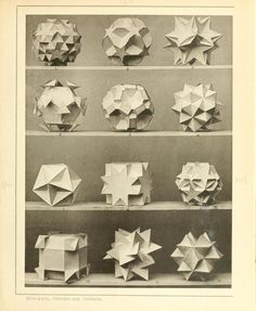 Max Brückner's Collection of Polyhedral Models (1900) | The Public Domain Review