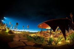 BALI'S BEST BEACH CLUBS - The Bali Bible