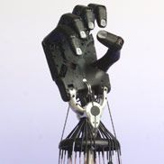 61 Best Pneumatic Robotic Grippers Images Arms Monsters