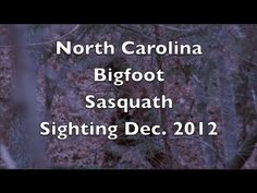 """Bone chilling Bigfoot or Sasquatch sighting with sound while deer hunting in North Carolina's Piedmont Region.  When this thing yelled it sent cold chills down my spine.  I'm going to use the phrase """"That's my story and I'm sticking to it"""" on this one.  Hope you enjoy my encounter and find it entertaining.  As Always Thanks For Watching...OohRah..."""