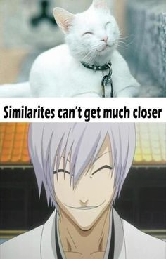 ♥...one of those anime guys that if they open their eyes....you die!~ T~T