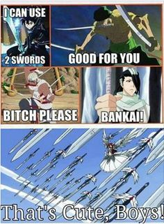 Close erza, but his bankai has billions of blades that are shaped like petals…