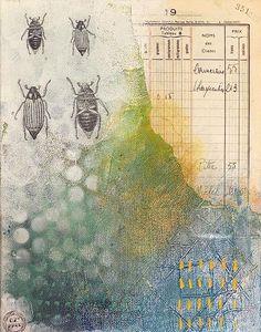 #insecte  #cabinetdecuriosité  #carnet  #insect  #beetles  #painting