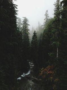 Mt. Rainier National Park, Washington, by Kevin Russ
