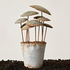 Creative Co-Op Secret Garden Iron Potted Mushrooms Decor Figurine