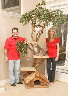 Amazing Pet Tree House