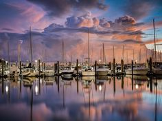 Before The Storm by