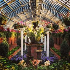 Phipps Conservatory and Botanical Gardens is a great place to visit to see some beautiful plants! I'd recommend it to anyone who is in the city.