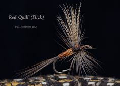 Beautiful Red Quill pattern..... a beautifully tied fly...