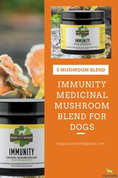 "⭐️⭐️⭐️⭐️⭐️ 08/14/19 ""Immunity mushroom blend I can highly recommend this product, it's been an absolute blessing to our 2 Keeshonds. Easy to use and the results are amazing."" - Marilyn S. Verified Buyer"