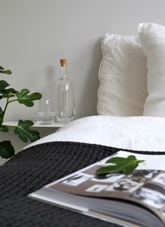 Home is better with U, with Urbanara - Hege in France charcoal quilt and fig tree in the bedroom