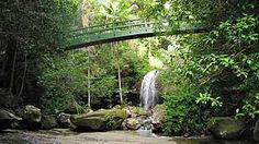 Buderim Forest Waterfall, Buderim [on the Sunshine Coast], Queensland
