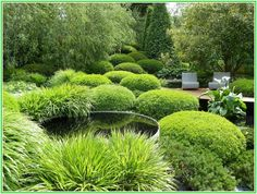 Remarkable Landscaping Images For Small Backyard