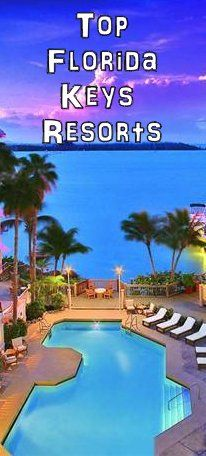 128 best florida resorts images on pinterest family resorts in rh pinterest com