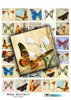 Digital collage sheet MAGIC BUTTERFLY 1.5x1.5 inch - square for glass pendant clipart insect magnet - instant download printable - qu321 by byJLeeloo on Etsy