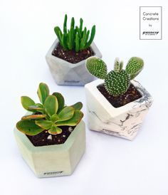 Shop now: www. Geo, Greenery, Planter Pots, Gift Ideas, Gifts, Presents, Gifs, Gift Tags