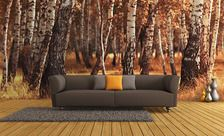 W-jesiennym-lesie-las-fototapety-demur